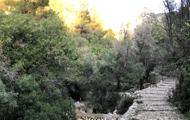Trekking por la sierra de Tramuntana Mallorca
